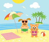 Summer background with cat and dog on the beach