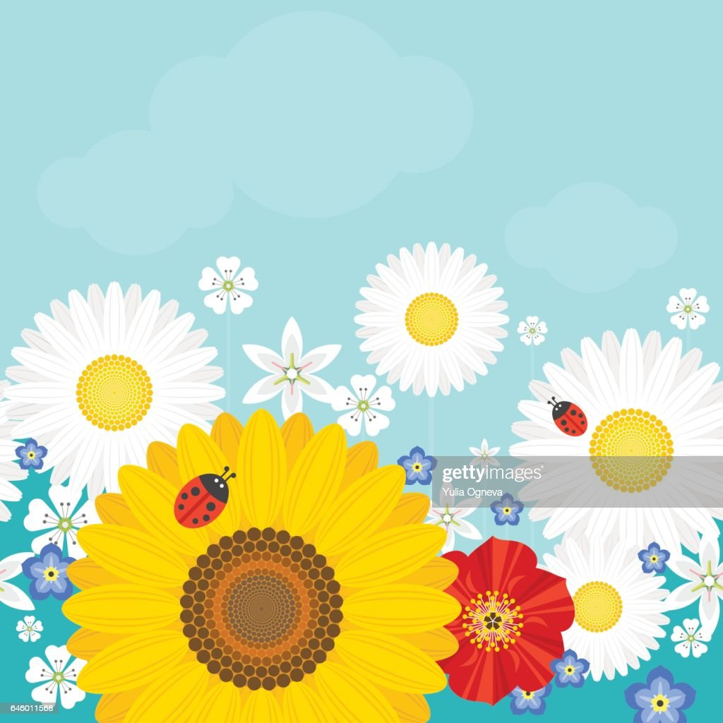 Summer background with flowers and ladybirds