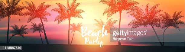 summer beach banner panorama - tropical sunsets stock illustrations