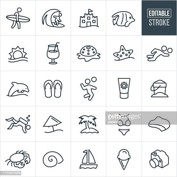 ilustraciones, imágenes clip art, dibujos animados e iconos de stock de verano playa línea iconos - trazo editable - concha de mar