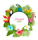 Summer Card With Tropical Plants, Hibiscus, Plumeria, Flamingo, Parrot, Toucan