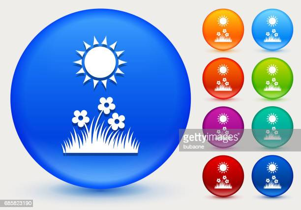 Summer Day Icon on Shiny Color Circle Buttons