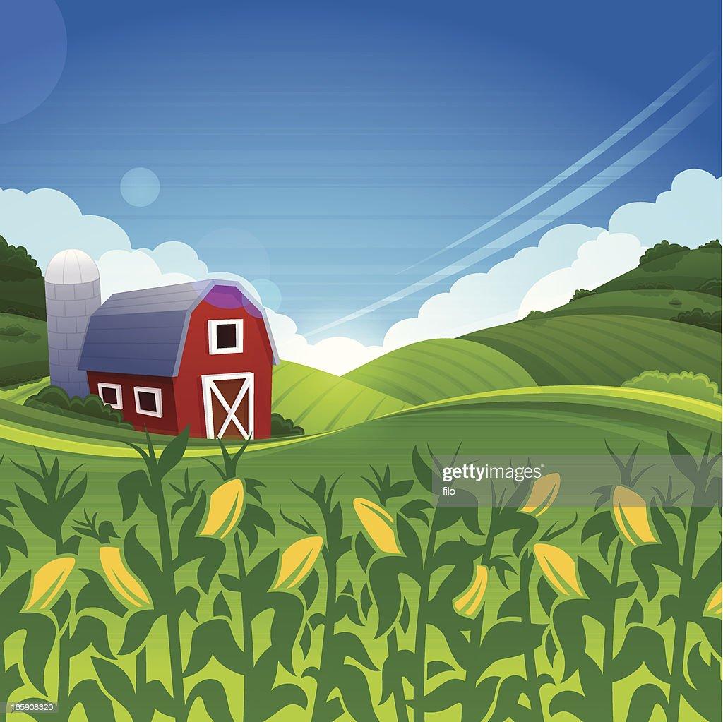 Summer Farm : stock illustration