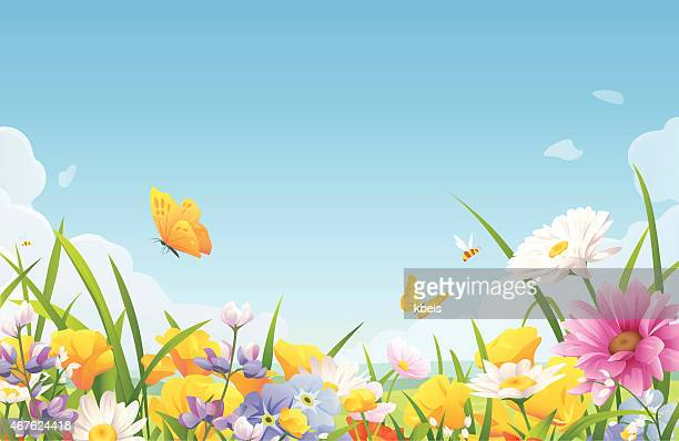 summer flowers on a meadow - springtime stock illustrations