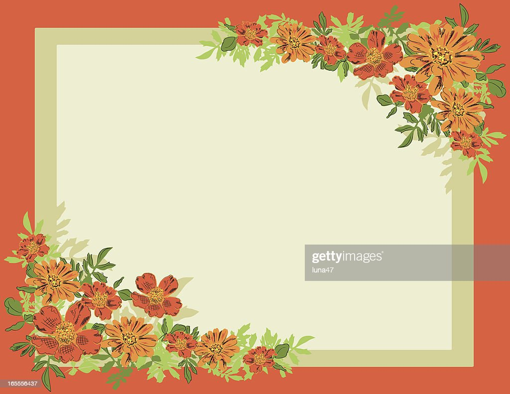 Summer Frame Cosmos And Daisies Vector Art | Getty Images