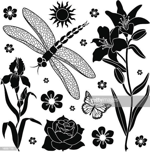summer garden design elements - odonata stock illustrations, clip art, cartoons, & icons