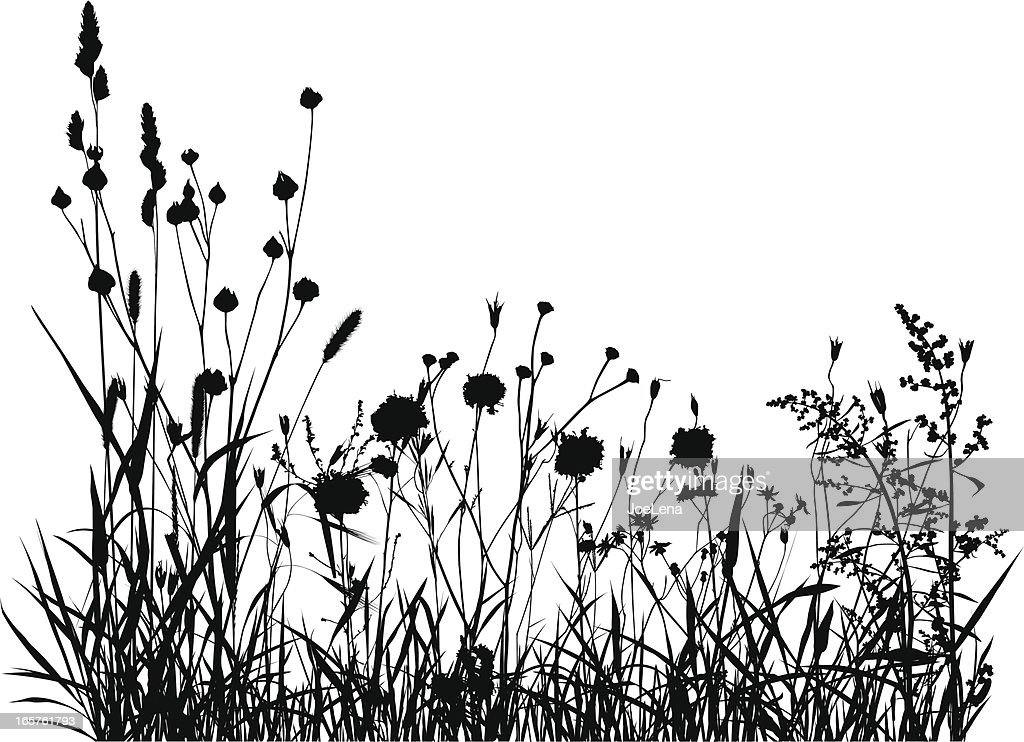 Summer Meadow Silhouette : Stock Illustration