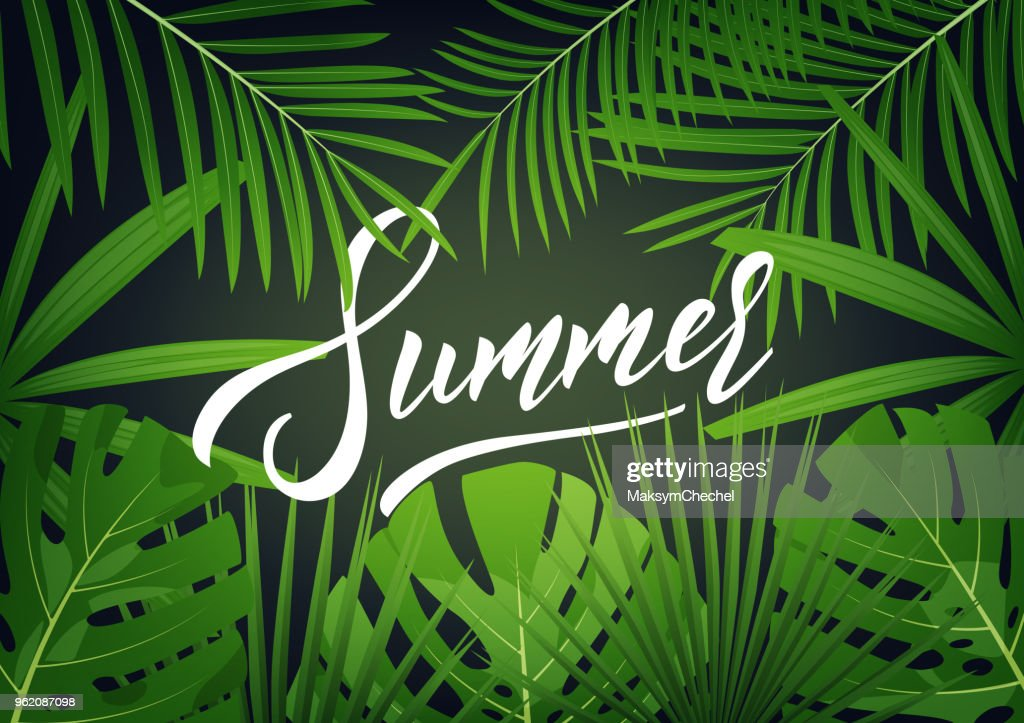 Summer. Modern design layout with lettering and tropic jungle leaves. Summer exotic background