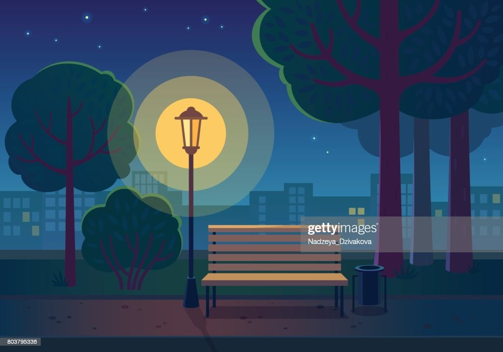 Summer night in the park.