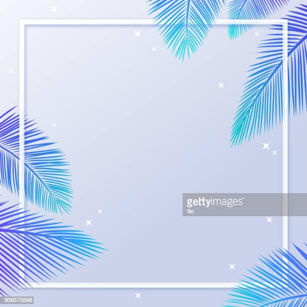 illustrations, cliparts, dessins animés et icônes de été palm leaf frame fond - feuille de palmier