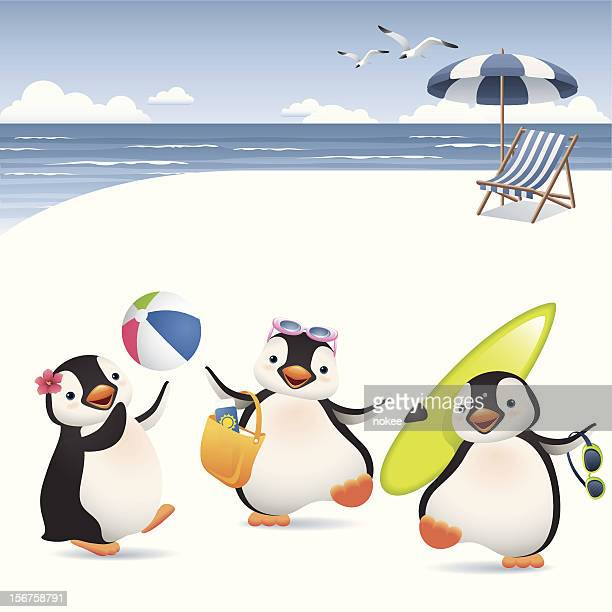 penguin stock illustrations and cartoons getty images