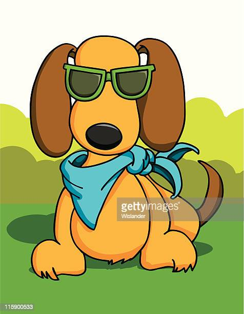 Sommer-Hund