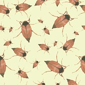 Summer seamless pattern with cockchafers
