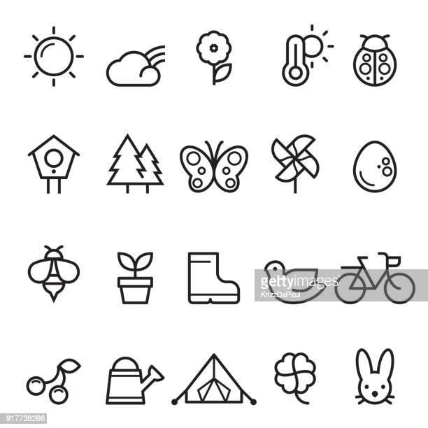 illustrations, cliparts, dessins animés et icônes de icônes de fine ligne printemps été - coccinelle