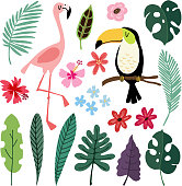 Summer tropical graphic elements. Toucan and flamingo birds. Jungle floral illustrations, palm, monstera leaves, hibiscus flowers. Isolated illustrations, kids flat design, vectors. Exotic nature