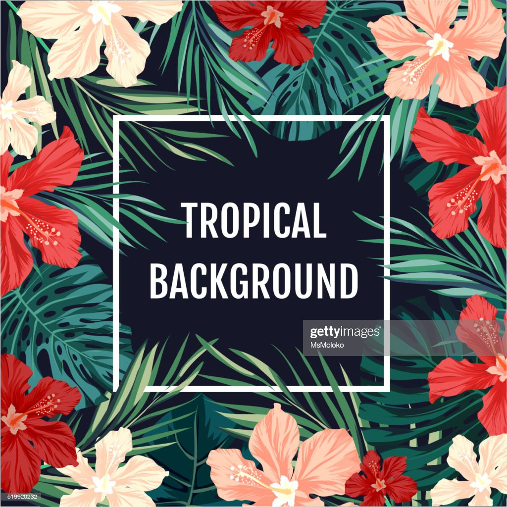 Summer tropical hawaiian background with palm tree leavs and exotic