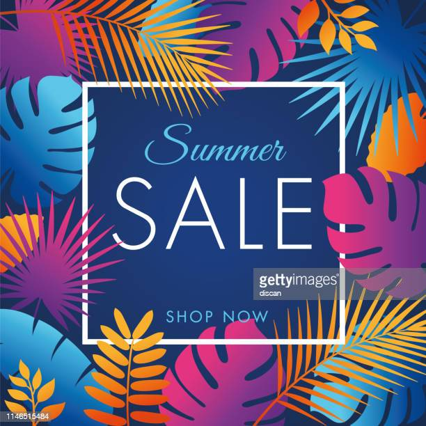 summer tropical sale banner with palm leaves and exotic plants. - tropical tree stock illustrations