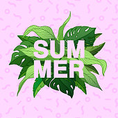 Summer typographic poster with tropical leaves and patte
