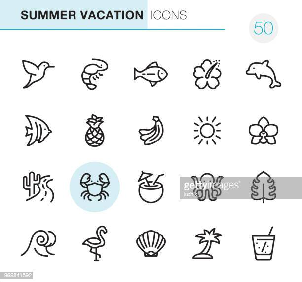 Summer Vacations - Pixel Perfect icons