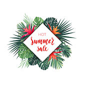 Summer vector floral sale banner. Tropical template design with palm leaves and red guzmania flowers
