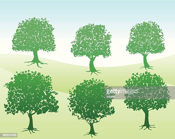 summer,spring green nature view with trees silhouette illustration
