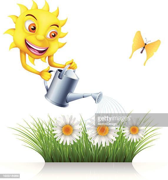 Sun d'arroser des fleurs