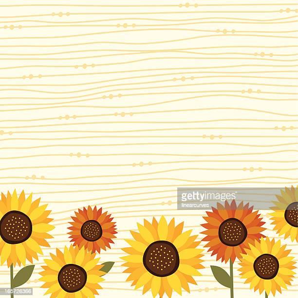 sunflower backgrond - sunflower stock illustrations, clip art, cartoons, & icons