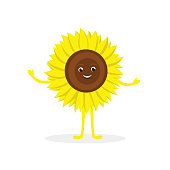 Sunflower cartoon character isolated on white background. Healthy food funny mascot vector illustration in flat design.