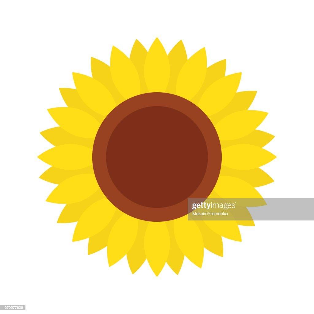 Sunflower icon, isolated on white background