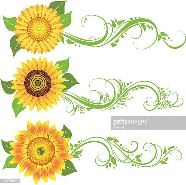 ilustraciones, imágenes clip art, dibujos animados e iconos de stock de adorno de girasol - girasol