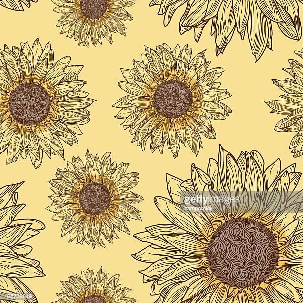 sunflower pattern - sunflower stock illustrations, clip art, cartoons, & icons