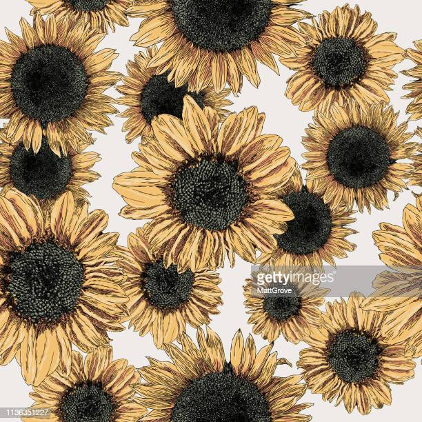 Sunflower Seamless Repeat Pattern