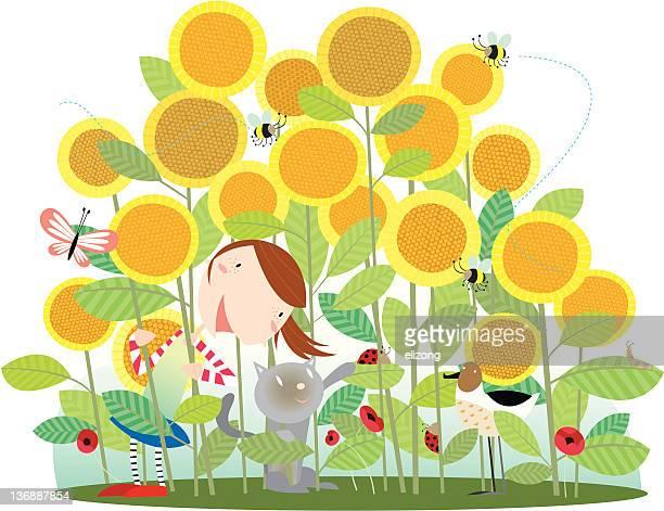 ilustraciones, imágenes clip art, dibujos animados e iconos de stock de girasol de verano - girasol
