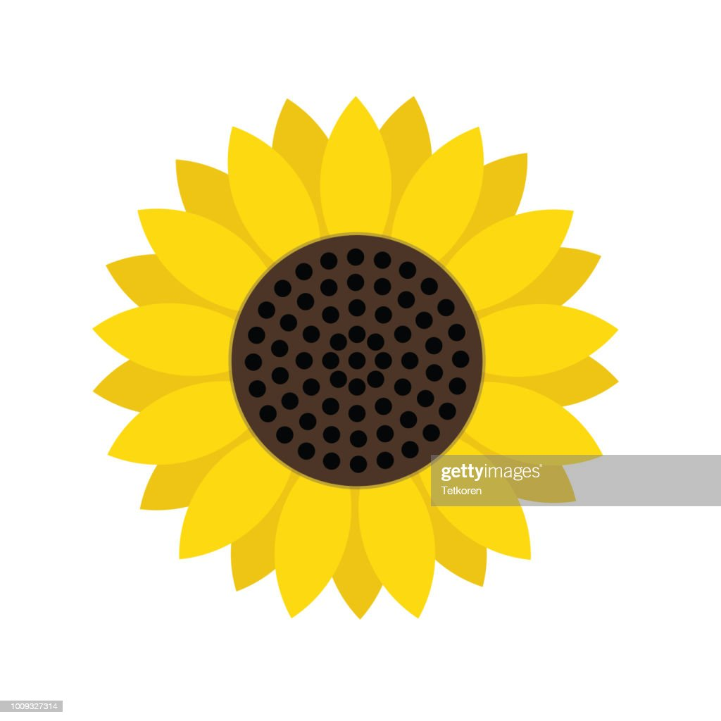 sunflower symbol icon, stock vector illustration