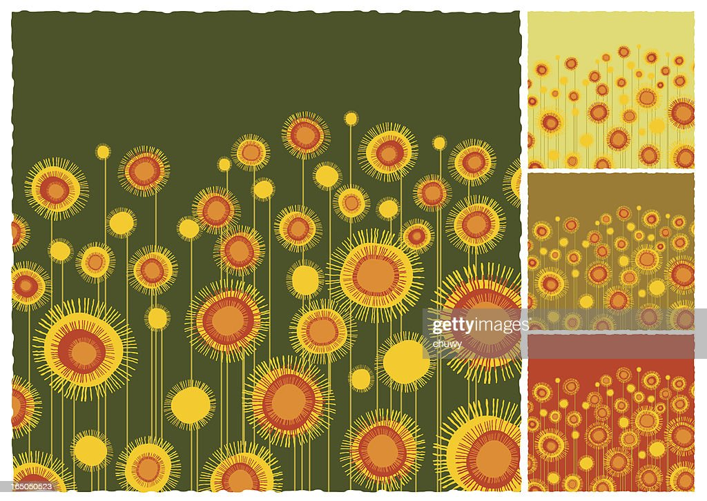 Sunflowers field background