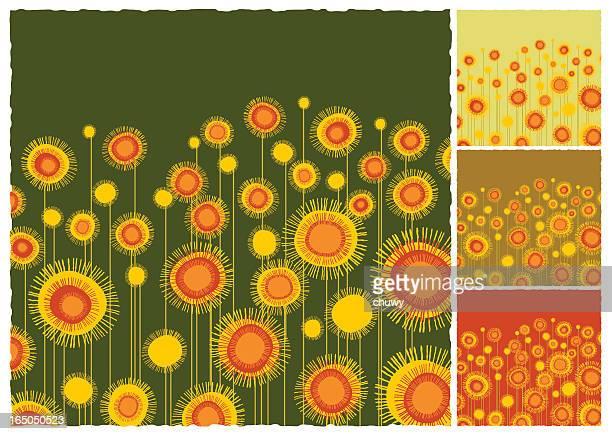 ilustraciones, imágenes clip art, dibujos animados e iconos de stock de sunflowers fondo de campo - girasol