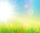 Sunny green background