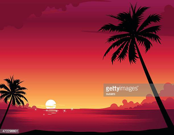 sunset beach - seascape stock illustrations, clip art, cartoons, & icons