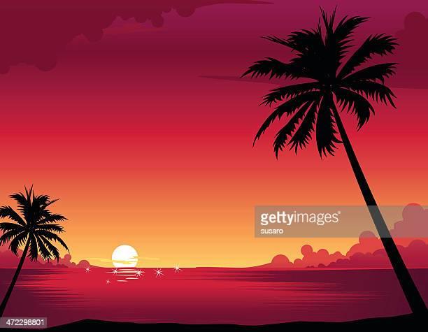 ilustraciones, imágenes clip art, dibujos animados e iconos de stock de atardecer en la playa - puesta de sol