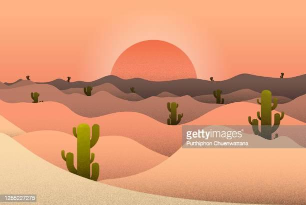 illustrazioni stock, clip art, cartoni animati e icone di tendenza di illustrazione sunset desert and cactus landscape. illustrazione di vector stock. - sabbia