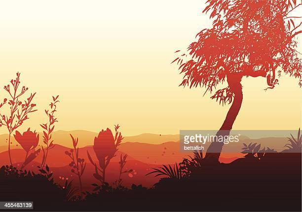 ilustraciones, imágenes clip art, dibujos animados e iconos de stock de puesta de sol en un valle - valle