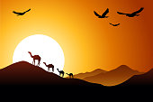 sunset in the desert