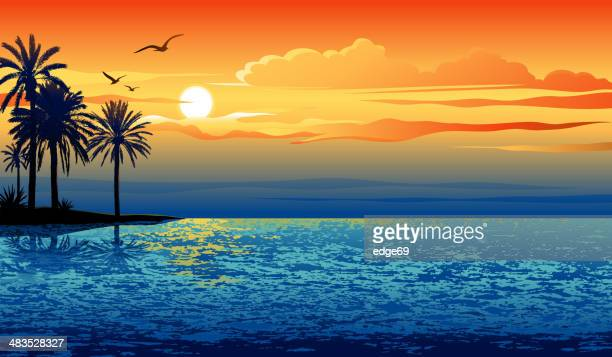 illustrations, cliparts, dessins animés et icônes de sunset island - coucher de soleil