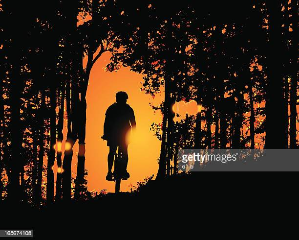 ilustrações de stock, clip art, desenhos animados e ícones de corrida na floresta ao pôr do sol - mountain bike