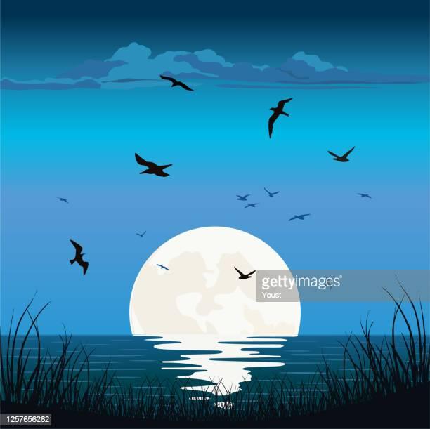 illustrations, cliparts, dessins animés et icônes de lever de soleil de coucher du soleil à l'océan de mer - île