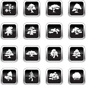 Supergloss Black Icons - Trees Species