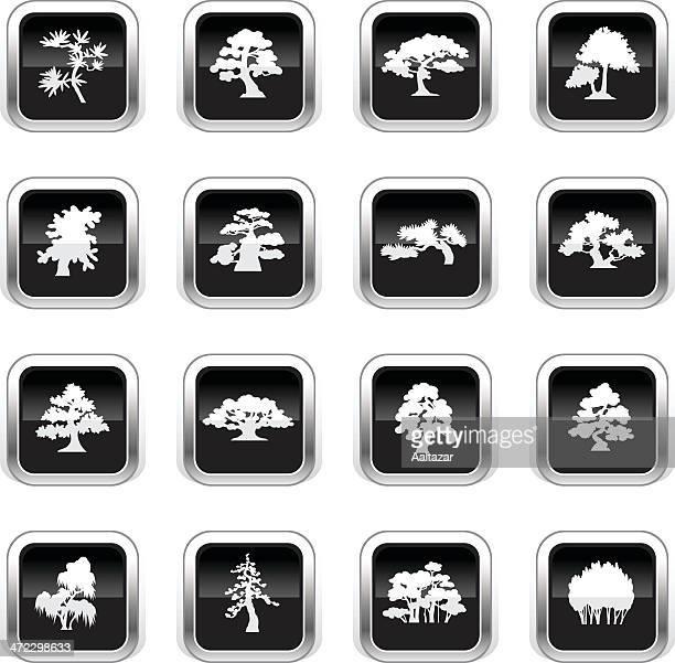 supergloss black icons - trees species - cedar tree stock illustrations, clip art, cartoons, & icons