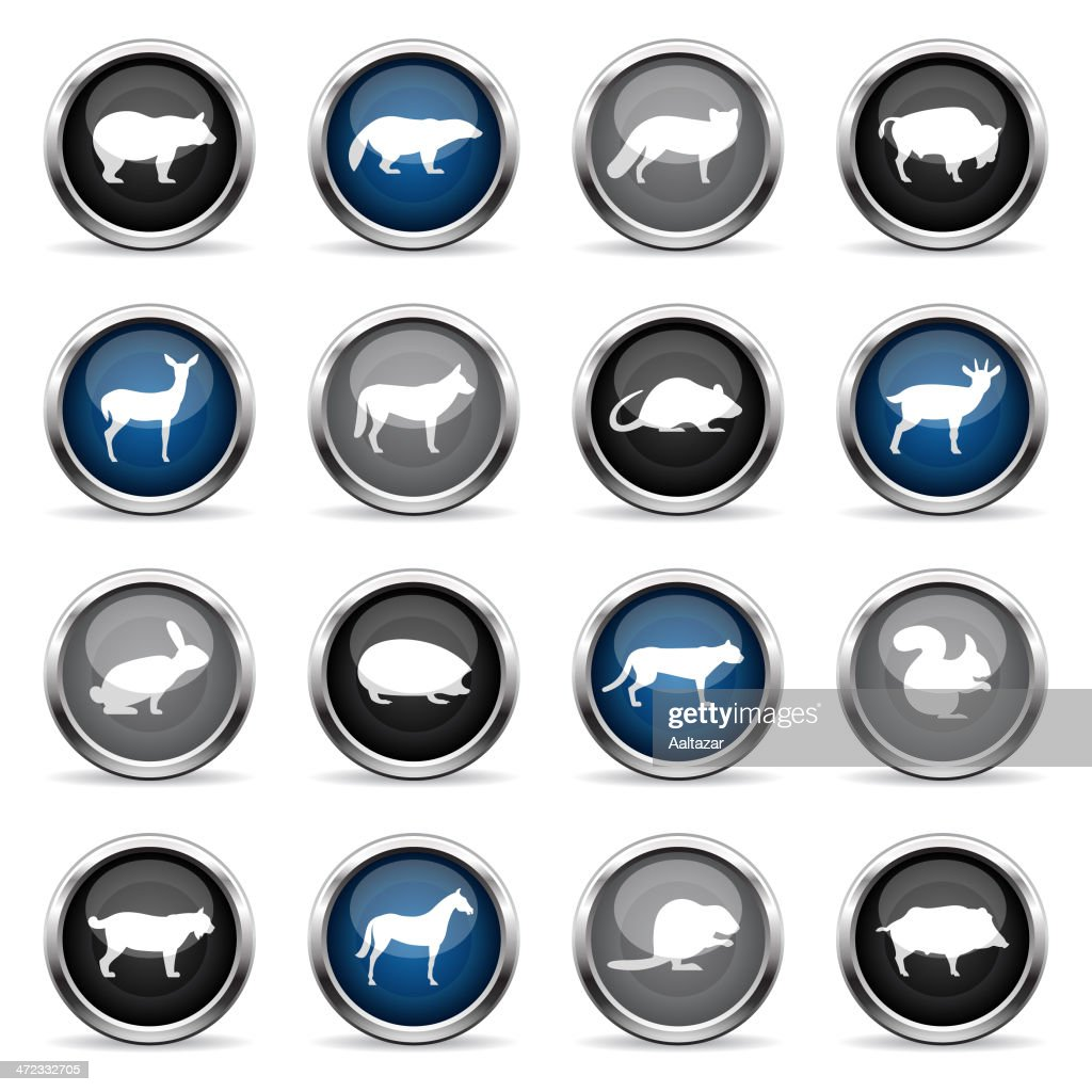 Supergloss Icons - Wild Animals : stock illustration