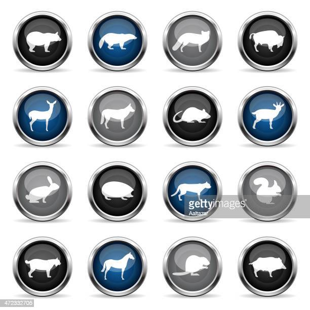 supergloss icons - wild animals - african buffalo stock illustrations, clip art, cartoons, & icons