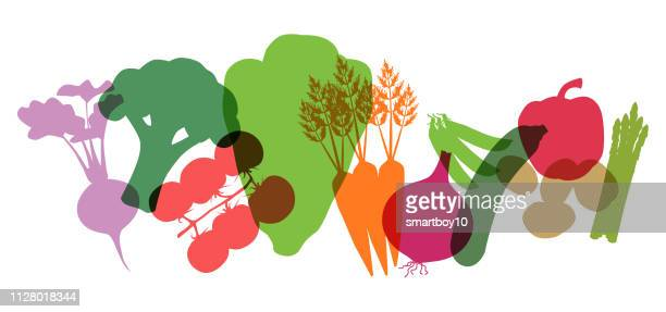 supermarket vegetables - freshness stock illustrations
